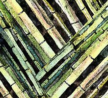 Bamboo Patterns I by JennyArmitage