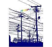 RAINBOW BIRDS Photographic Print