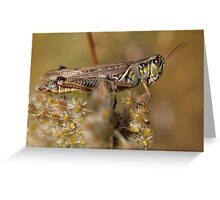 Hopper 2 Greeting Card