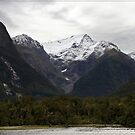 In Milford Sound by Chris Cohen