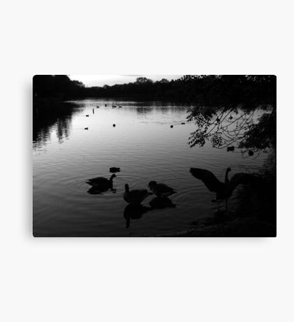 Morning Waters Canvas Print