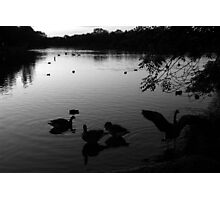 Morning Waters Photographic Print