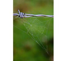 'Website'  Photographic Print