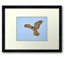 I got my eye on You Framed Print
