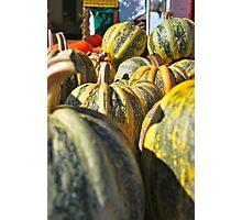 Pumpkin Green Photographic Print