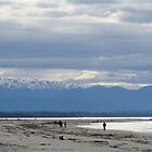 Peaceful walk on the Nelson beach, New-Zealand. by jos2507