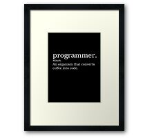 Definition - Programmer Framed Print