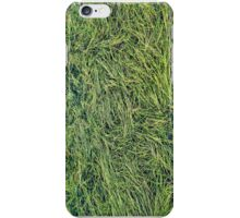 Abstract of grass / reeds floating on a mountain pond iPhone Case/Skin