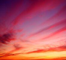 Red Sky by Trevor King