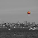 Paraglider by pnjmcc
