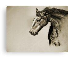 Megan's Horse Canvas Print