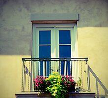 Windowbox by Wendy Mogul