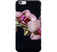 Orchids 1 iPhone Case/Skin