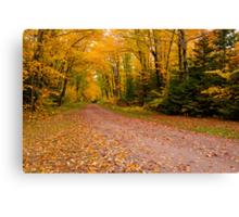 Yellow fall Driveway Canvas Print
