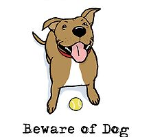 Beware of Dog by Jenn Inashvili