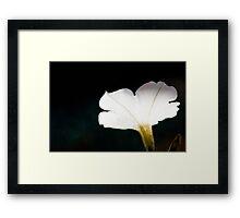 glow... Framed Print