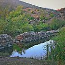 Old Mission Dam-Historic Landmark by Heather Friedman