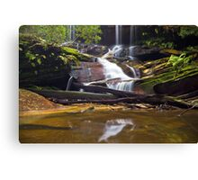 From a Trickle to a Flow Canvas Print