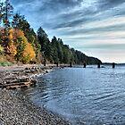 Island Beach by Keri Harrish