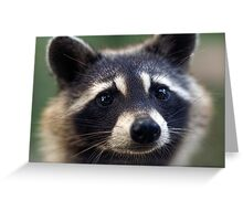 """"""" Such A Sweet Little Girl"""" Greeting Card"""