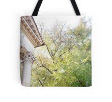 my pantheon  Tote Bag