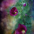 """"""" Late Afternoon Hollyhocks """" by Melinda Stewart Page"""