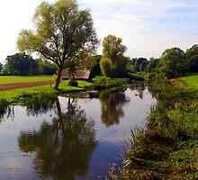 River Reflections by John Dalkin