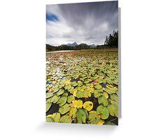 Clarrie Hall Dam - Northern NSW - Australia Greeting Card