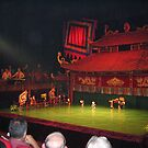 Water Puppet Theatre by machka