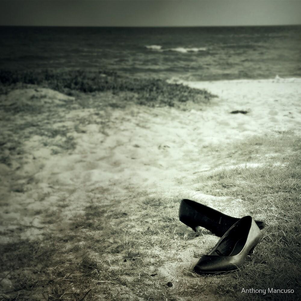 vanish by Anthony Mancuso