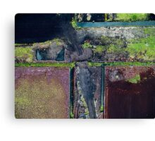 Abstract Peat Landscape No2,  Canvas Print