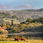 The Lake District in Autumn. by Irene  Burdell