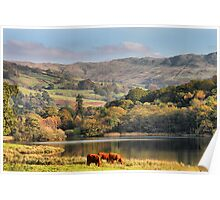 The Lake District in Autumn. Poster