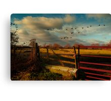 Wild Geese Canvas Print