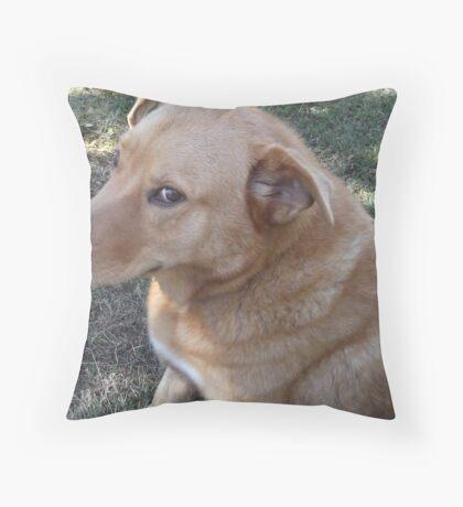 Pooper Throw Pillow