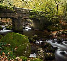 Shaugh Bridge by Trevor King