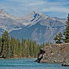Rocky Mountain Landscape by Keri Harrish