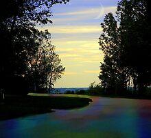 Rainbow Road by Greta  McLaughlin