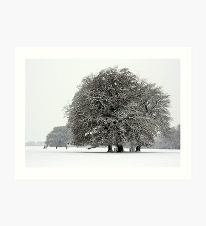 Winter in Petworth Park Art Print