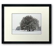 Winter in Petworth Park Framed Print