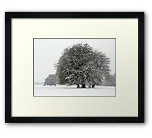 Winter in Petworth Park Framed Print