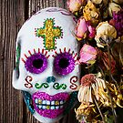 Fancy skull and dead flowers by Garry Gay