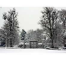 Iron Gate, Petworth Park. Photographic Print