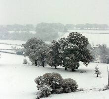 Winter in Petworth by Emma Turner