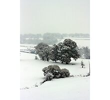 Winter in Petworth Photographic Print
