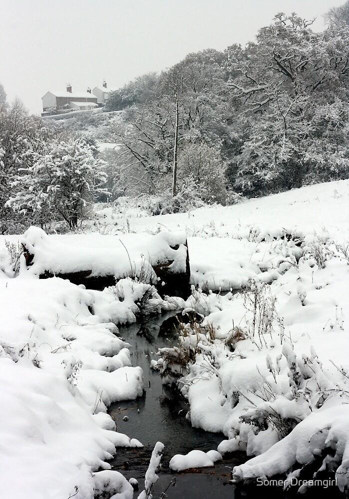 Snowy Stream, Petworth. by Emma S