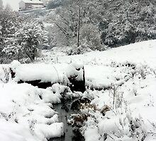 Snowy Stream, Petworth. by Emma Turner