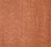 Brown wood by homydesign