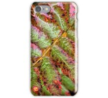 Colourful leaves iPhone Case/Skin