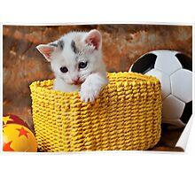 Kitten in yellow basket Poster